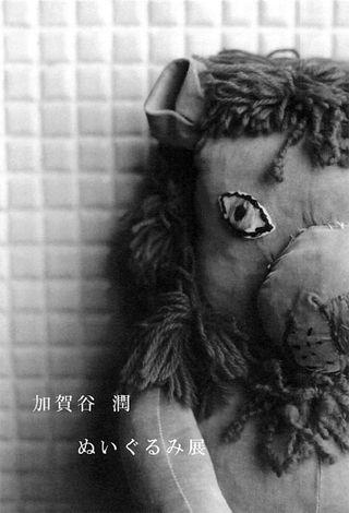 20100116-lion