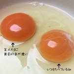 谷川養鶏の「美人たまご」。美人は皆食べている・・・かどうかはわかりませんがおいしくいただきました。