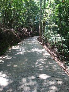 本山寺ルート