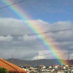 虹の始まりを見つけた。